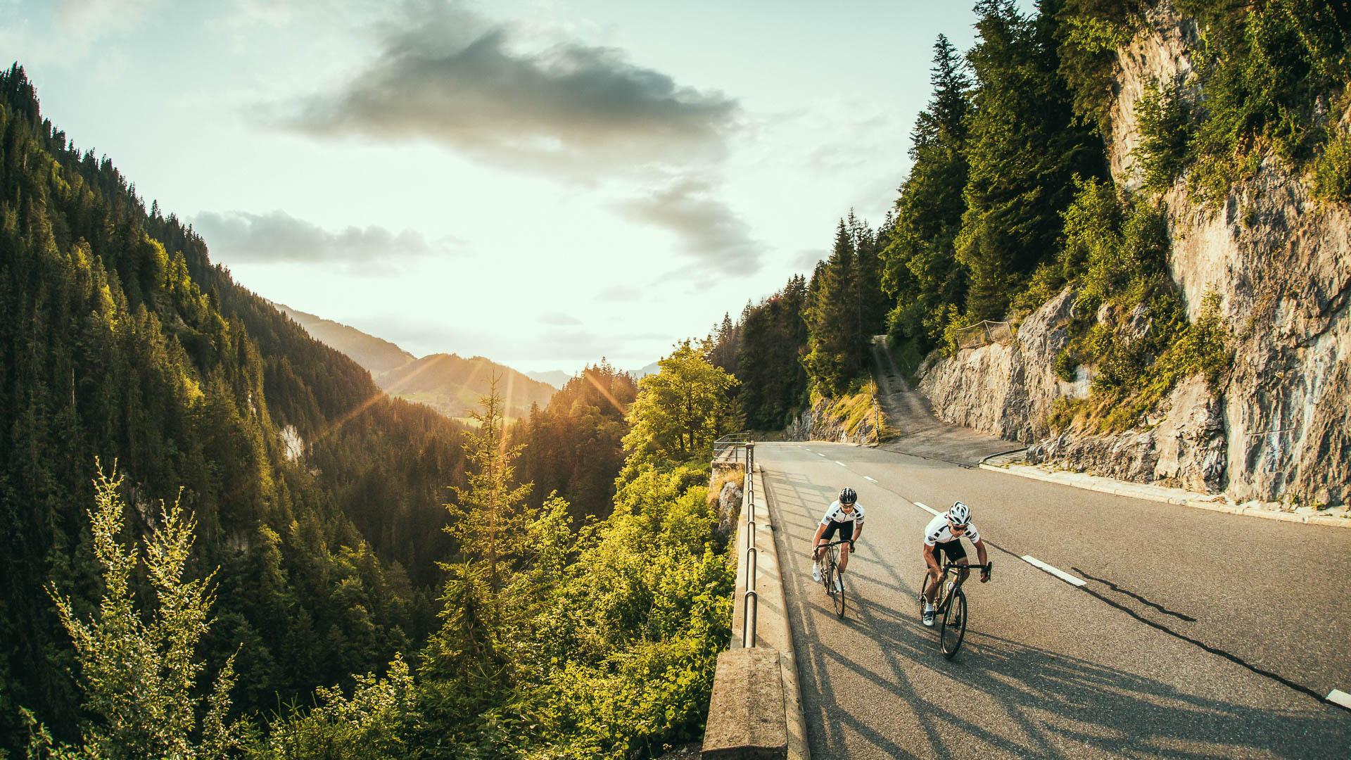 Rennräder fürs Leben